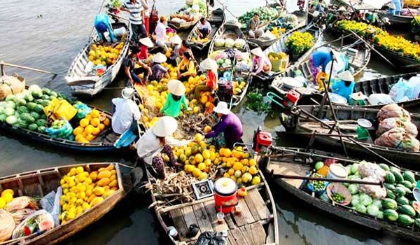 Transfer from Ho Chi Minh city to Can Tho