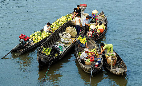 Mekong Delta Tour 1Day
