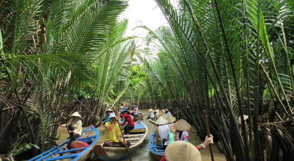 Transfer from Saigon to Mekong delta