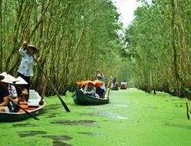Tra Su Sanctuary bird 1 day tour