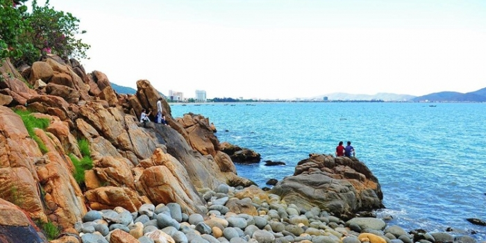 Transfer from Hoi An to Quy Nhon